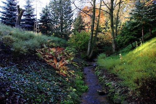 Břehová zahrada s potůčkem