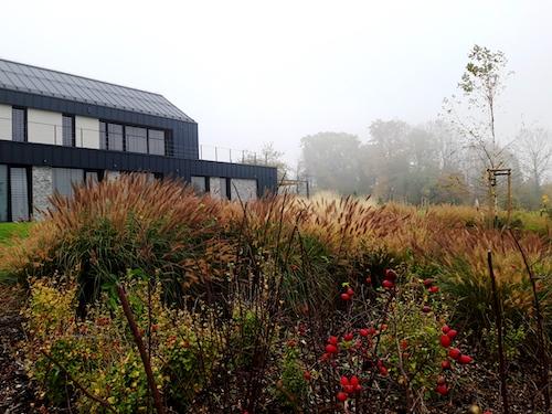 Zahrada s mlhou